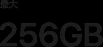 最大256GB